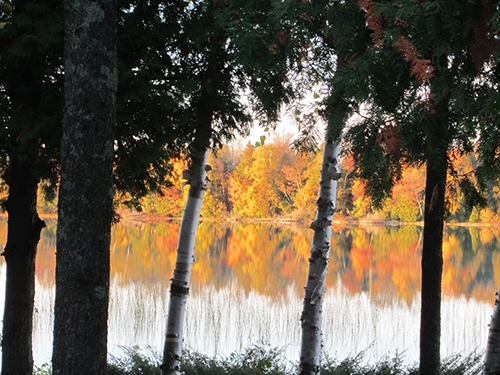 Autumn lakeview from Diane Gissell.